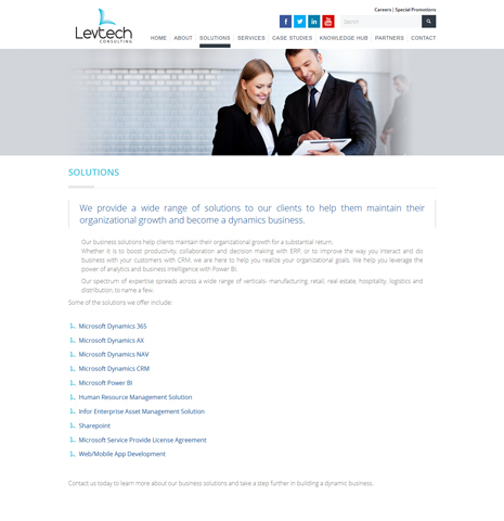LevTech Consulting